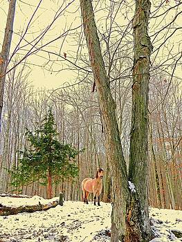 Wintertime Moment by Patricia Keller