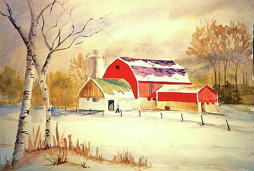 Wisconsin Winter by Robin Zuege