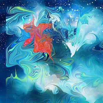 Wish on a Star by Rachel Christine Nowicki