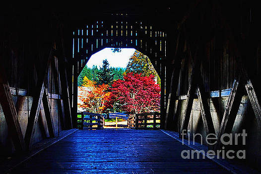 Within the Pass Creek covered Bridge by Ansel Price