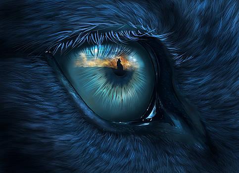 Wolf eye by Bernadett Kovacs