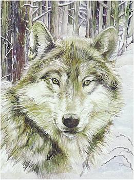 Wolf head by Morgan Fitzsimons