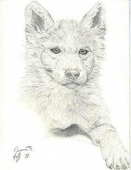 Wolf Pup by Jesska Hoff