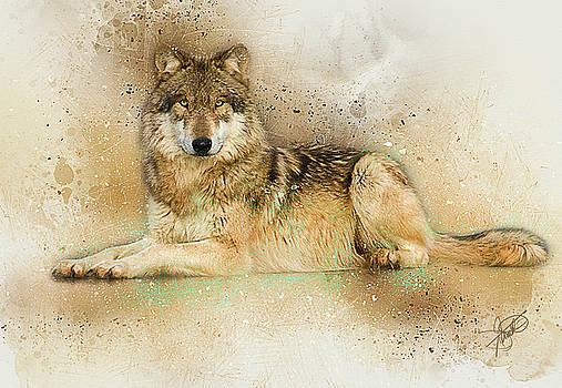 Wolf by Tom Schmidt