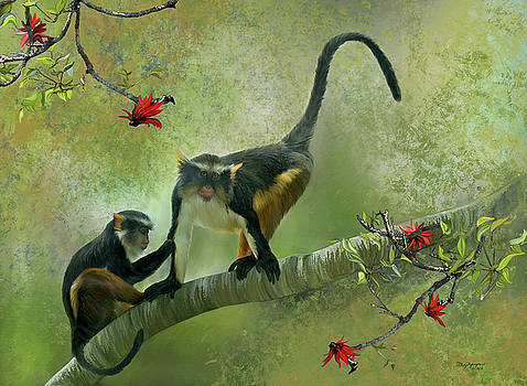 Wolf's guenon by Thanh Thuy Nguyen