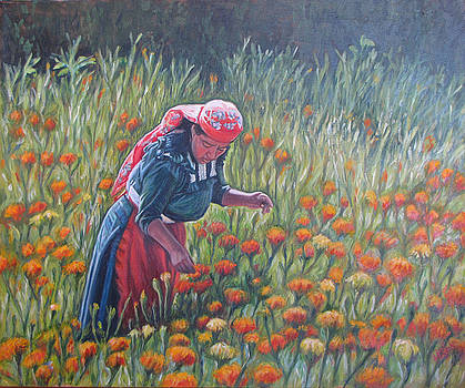 Woman in field of cempazuchitl flowers by Judith Zur