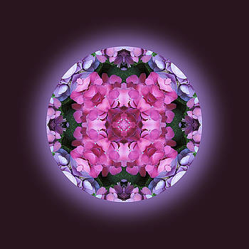 Wonderful Purples Mandala by Jorge Gomez