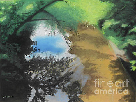 Wood Creek Shadows and Reflections by Robert Coppen