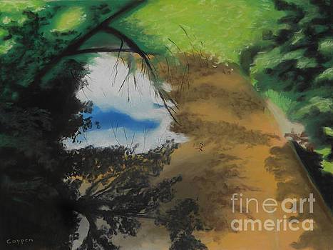 Wood Creek Shadows and Reflections with Flies by Robert Coppen