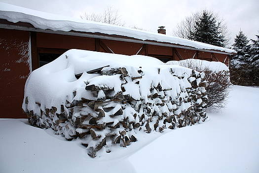 Anne Babineau - wood pile