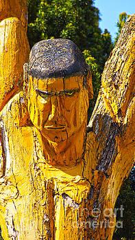 Wood sculpture in a garden by Eva-Maria Di Bella