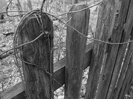 Wooden Fence by Jeff Breiman