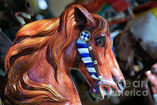 Wooden Horse by John S