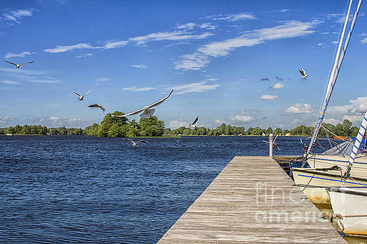 Patricia Hofmeester - Wooden jetty , boats and seagulls