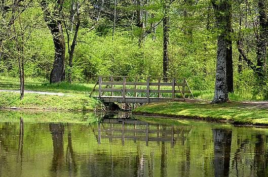 Maria Urso  - Woodland Bridge 15-02