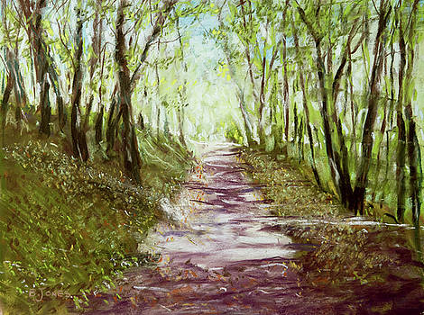 Woodland Path - Impressionism Landscape by Barry Jones