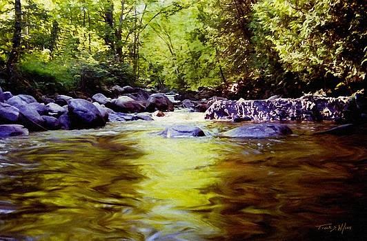 Woodland Pool by Frank Wilson