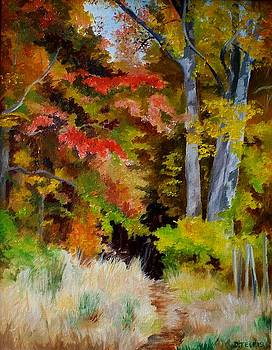 Woodland Trail by Donna Teleis