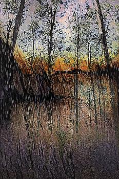 Woodland Twilight by Gail Gates