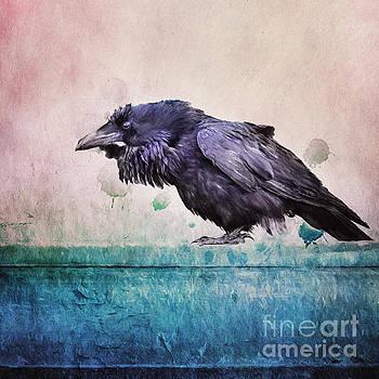 Words of a Raven by Priska Wettstein