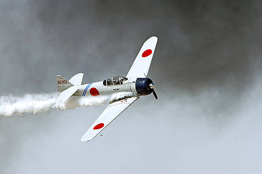 WWII Fighter by Shoal Hollingsworth