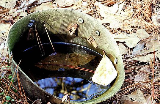 World War 11 Helmet Liner by Cathy Harper