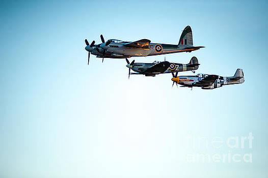 WWII Planes by Wayne Wilton