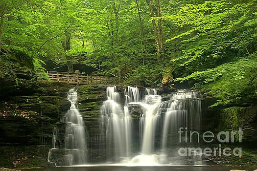 Adam Jewell - Wyandot Falls Streams