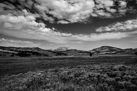 Wyoming bound  by Maik Tondeur