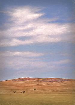 Steve Ohlsen - Wyoming Fields 2
