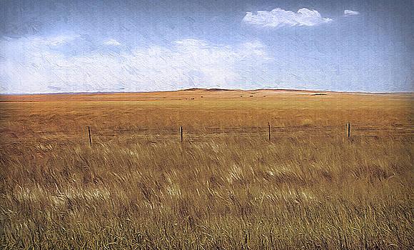 Steve Ohlsen - Wyoming Fields