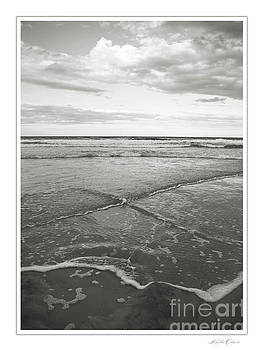 X Tide Sepia by Linda Olsen