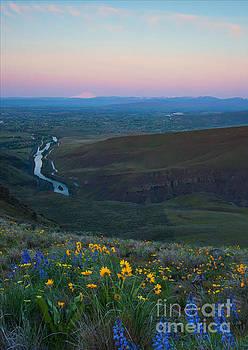 Mike Dawson - Yakima River Dawn