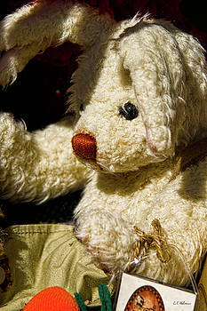 Christopher Holmes - Yard Sale Bunny