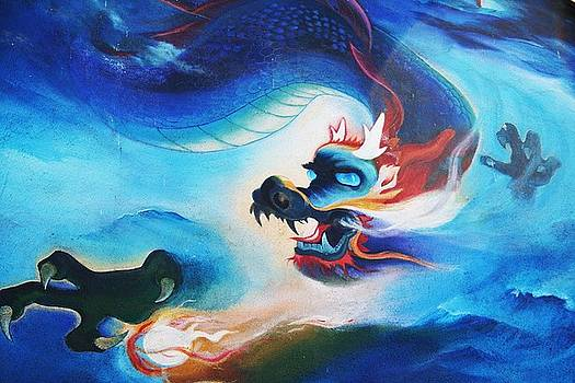 Year of the Dragon by Shelly Davis
