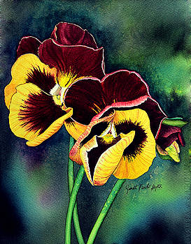 Yellow and Maroon Pansy by Janet Pancho Gupta