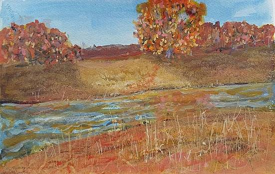 Yellow and Red Maples by Robert Harrington