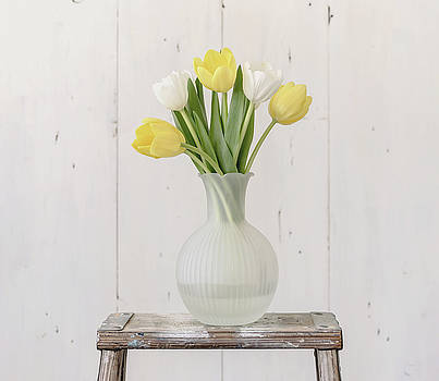 Kim Hojnacki - Yellow and White Tulips