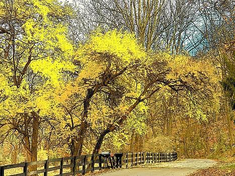 Yellow Bend by Joyce Kimble Smith