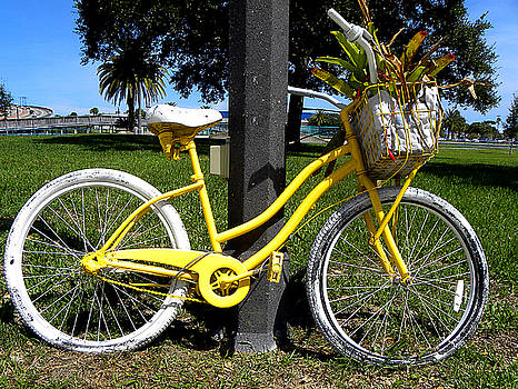 Yellow Bicycle by Chris Mercer