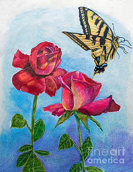 Yellow Butterfly and Roses by Scott Parker