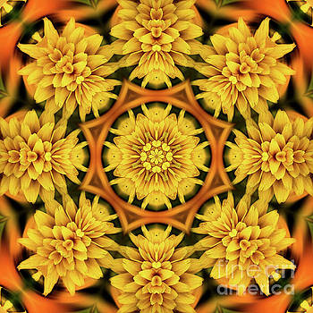 Yellow Flower Petals Abstract by Smilin Eyes  Treasuress