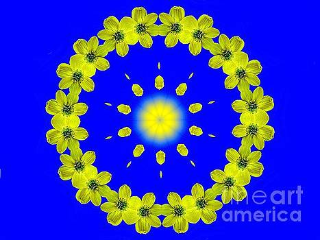 Yellow Flowers Circle A Sunburst by ImagesAsArt Photos And Graphics