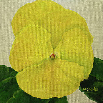 Yellow Pansy by Wendy Shoults