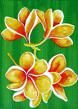 Yellow Plumerias by Debbie Chamberlin