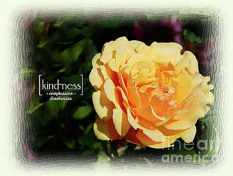 Yellow Rose of Kindness by Elaine Manley