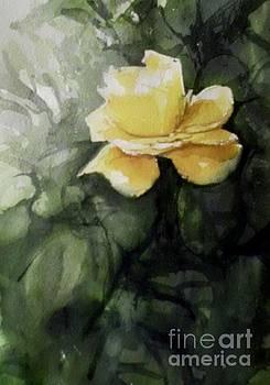Yellow Rose by Paez De Pruna