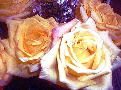 Yellow Roses1 by Maria Mills
