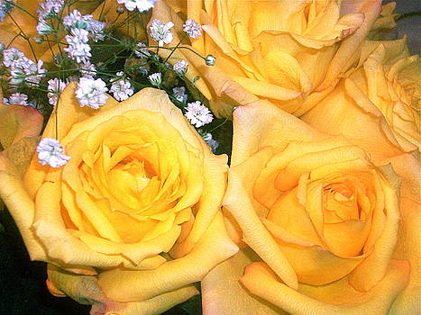 Yellow Roses2 by Maria Mills