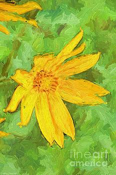 Yellow Summer Wildflowerw II by Debbie Portwood